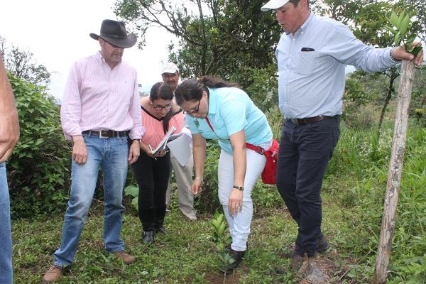 Con éxito avanza proyecto de siembra de guanábana, guayaba y cítricos en Tununguá