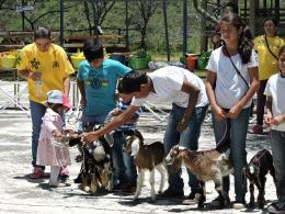 Segunda Feria pedagógica caprina en la Institución educativa técnico agrícola de Boavita