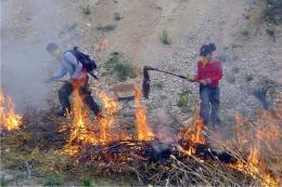 Boyacá en alerta roja por incendios Forestales