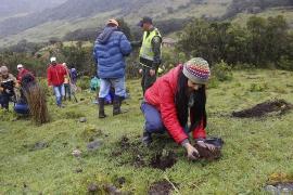 Este 20 de septiembre vence plazo para presentar proyectos de producción agrícola