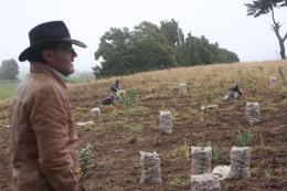Aproximadamente $ 16.000 millones invertirá Boyacá en el agro durante el segundo semestre del 2015