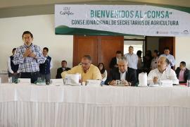 Ministro de Agricultura y Desarrollo Rural celebra declaratoria del 'Año del Campo' en Boyacá