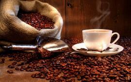 Boyacá le apuesta al cultivo de café especial con apoyo de la Federación Nacional de Cafeteros