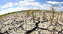 Territorios de la Región Central definen su ruta en materia de cambio climático