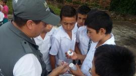 Secretaría de Salud busca controlar la transmisión de la enfermedad de Chagas