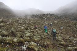 Simulacro de rescate en alturas en el  Nevado de El Cocuy