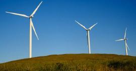 Convocatoria para propuestas innovadoras en energías alternativas para el sector agropecuario