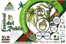 Moniquirá realizará el Primer Festival del Roble