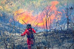 Gestión del riesgo advierte sobre ocurrencia de incendios