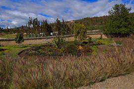 Gobernación de Boyacá invita a conocer el Jardín Botánico en Tunja