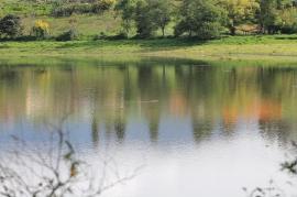 Gobernación de Boyacá apoya la conservación de la biodiversidad
