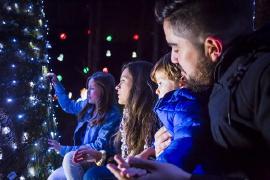 Gobernación de Boyacá inaugura iluminación navideña