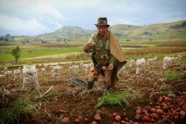 Gobernación de Boyacá respalda a los campesinos para acceder a créditos