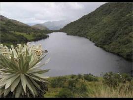 Parques Nacionales de Colombia promueven sistema de conservación de Santuario de Guanentá