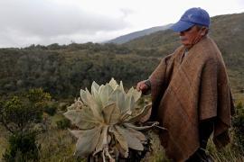 A Boyacá llega el proyecto Guardapáramos Voluntarios