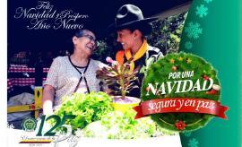 Policía Nacional en Boyacá tiene listo el plan de seguridad para temporada de navidad y año nuevo