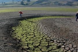 Llamado a alcaldes beneficiados con recursos para recuperar cultivos afectados por cambio climático
