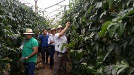 Administración visitó importantes inversiones en la provincia de Lengupá
