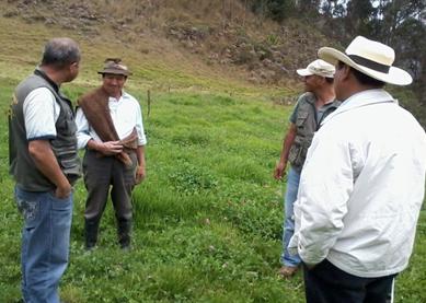 Foto: Secretaría de Fomento Agropecuario Gobernación de Boyacá