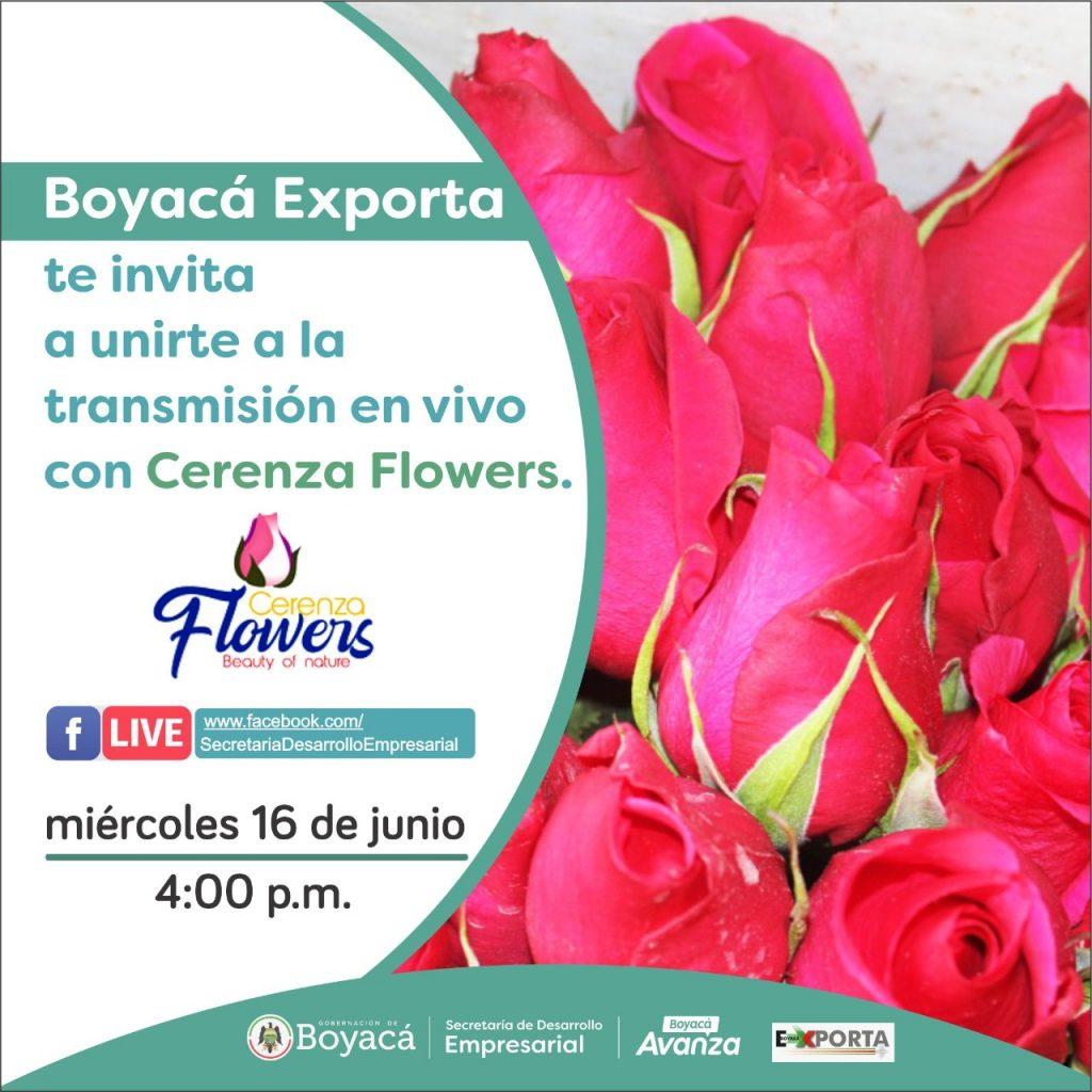 Cerenza Flowers será la empresa invitada a la transmisión en vivo de la Dirección de Inversión y Comercio de la Secretaría de Desarrollo Empresarial.